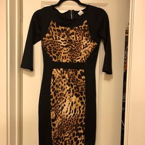 Leopard knee length dress